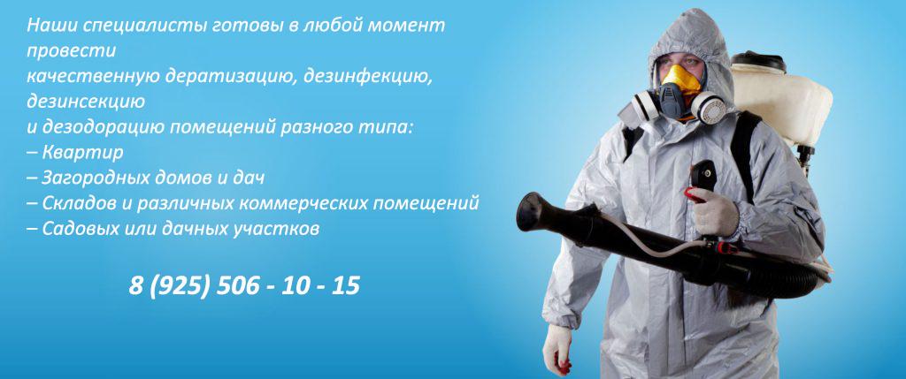 дезинсекция-в-москве