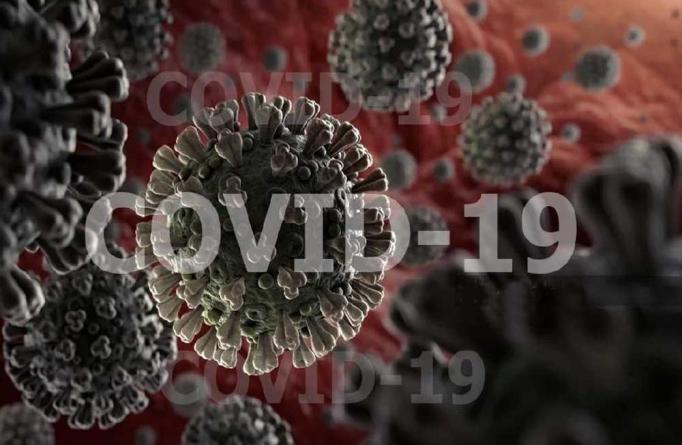 Цены на дезинфекцию от коронавируса COVID-19