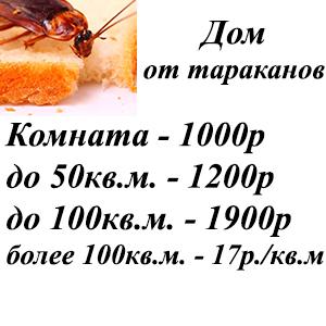 Уничтожение тараканов в доме